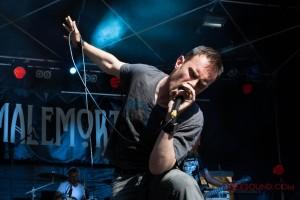RNR-Train-Fest-2015-J1-Malemort-2